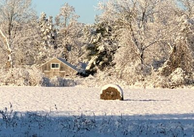 LHT Snow-covered Hay Bale photo by John Marshall