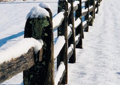 LHT Snow-covered Fence photo by Lynn Dorsey