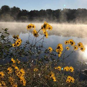 LHT Mercer Meadows Lake