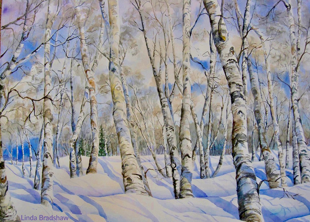 LHT Linda Bradshaw Birch Trees