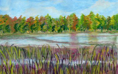 Art on the Trail Featured Artist: Manveen Bindra