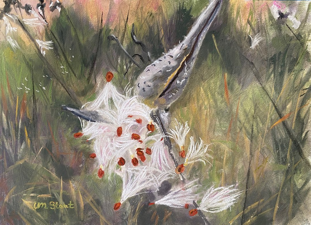 LHT Art on the Trail Lucia Stout Milkweed