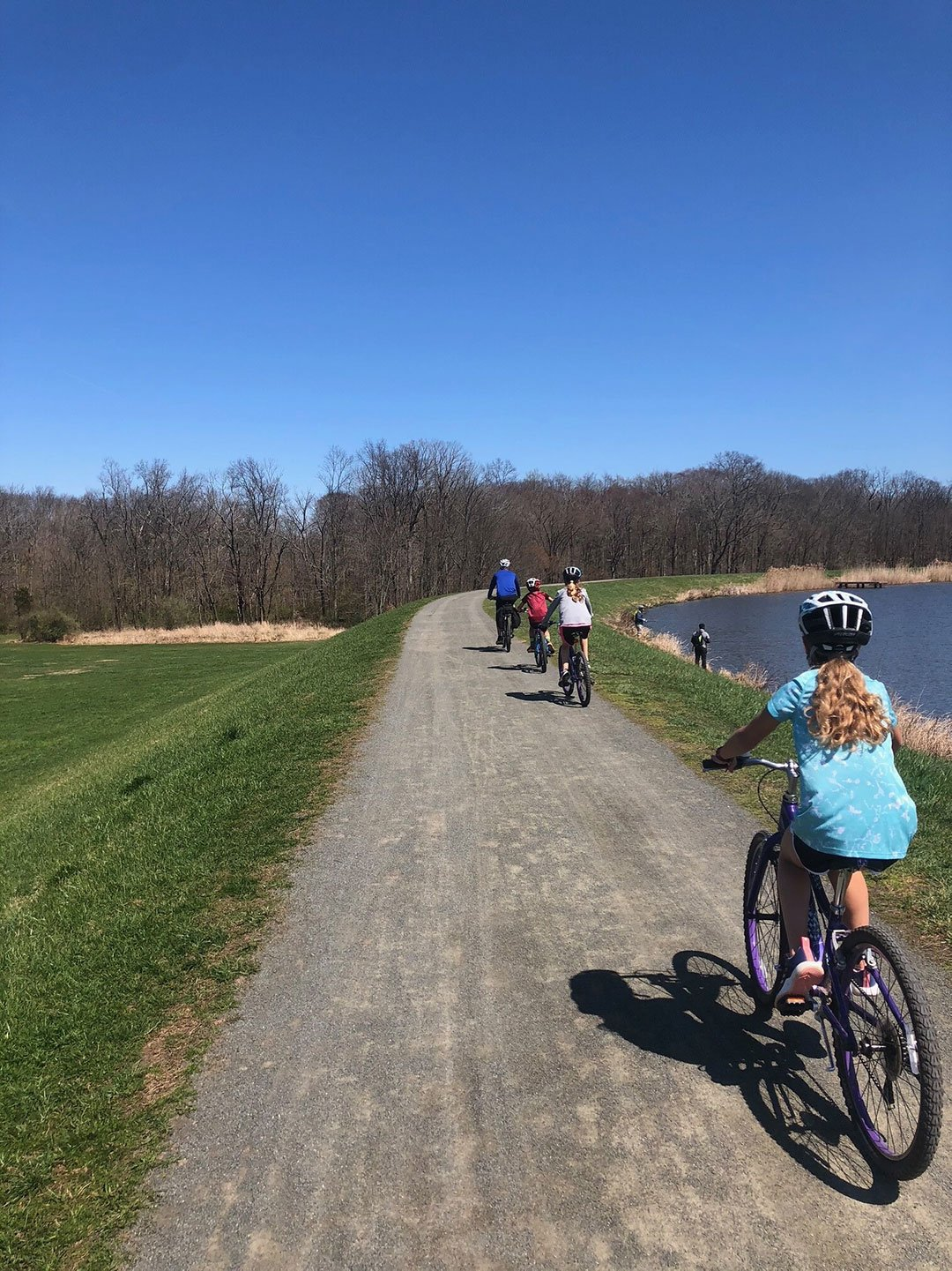 LHT Bikes at Rosedale
