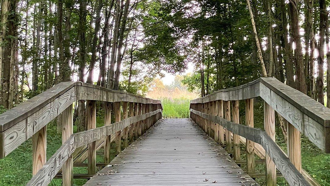 LHT MM Pole Farm bridge
