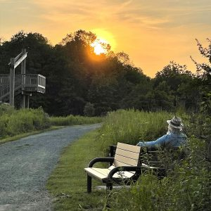 LHT MM Pole Farm Sunset